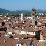 Lucca, Lucca, panorama dalla Torre Guinigi